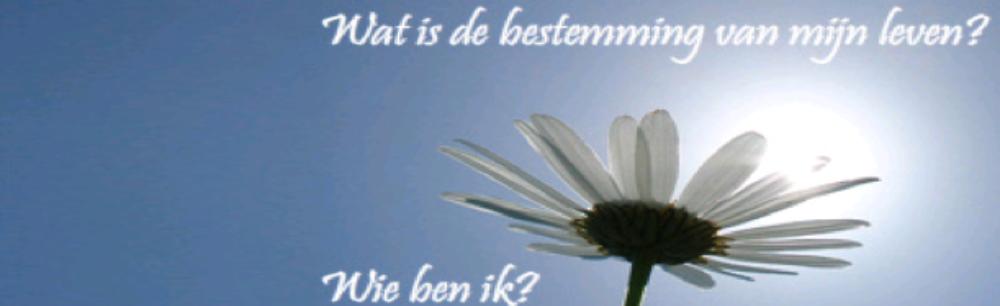 Stichting voor Praktische Filosofie Zeeland